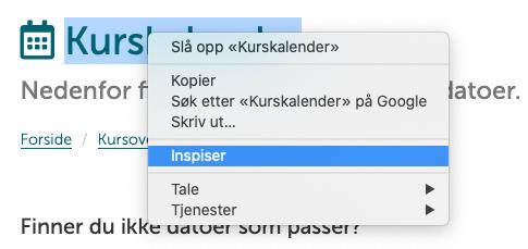 Inspiser, Chrome. Skjermbilde.